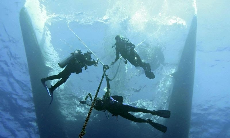 Visit our website and use our scuba diving in jamaica travel planner for your next dive trip to jamaica!